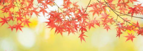 この期間があるから実り多き秋になる。