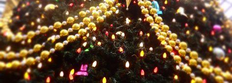ディスプレイがクリスマスでキレイでした♡