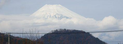 富士山。温泉。駿河湾。深海生物。