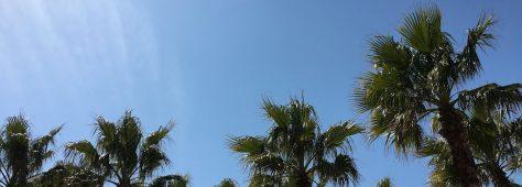 撮り方次第でリゾート風♥️地元でのとある一日