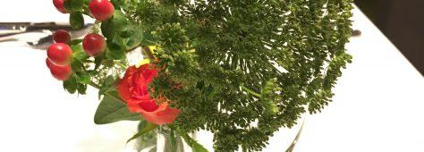 無事におひらき💖秋の花も発見です。