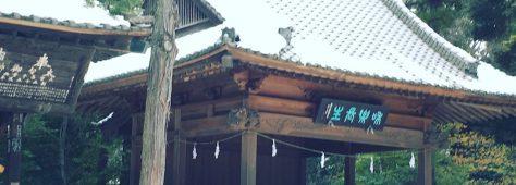 風情がありました。雪の氷川神社