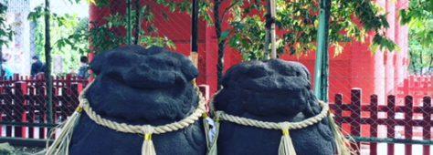 浅草神社で発見!夫婦狛犬