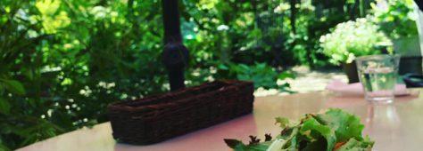 市川市の農園カフェ。