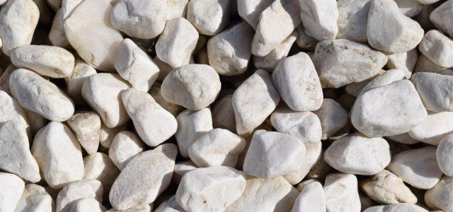 ゲストのテーブルに石が!?驚いた留学生のハナシ